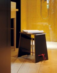 Strammer Max Bathroom